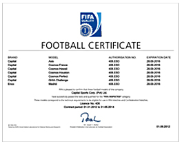 FIFA Inspected Licensing Certificate